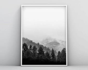 Black and White Woodland Printable, Forest Photography Printable, Wilderness Printable, Woodland Print, Wilderness Wall Art, Minimal Artwork
