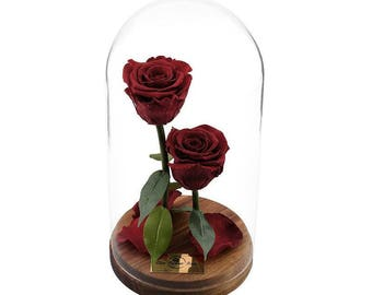 Forever Rose in Glass, Enchanted Rose, Preserved Rose, Beauty And The Beast Rose Valentines Day Gift for Her %100 Natural LFR0001
