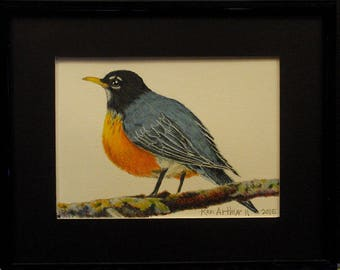 "Bird Drawing Prismacolor Pencil Drawing Nature Wall Art ""Robin Redbreast"" by Ken"