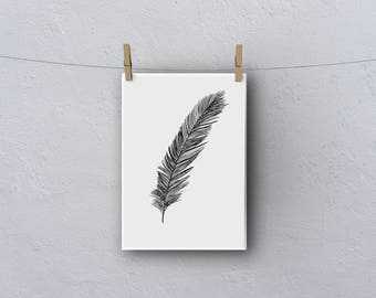 A3 Black and White Feather Print
