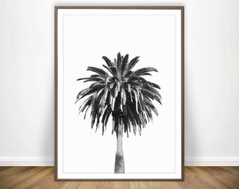 Black and White Palm Tree Print *  Palm Wall Art Palm Print Palm Decor Palm Poster Black and White Printable Palm Art Palm Tree Art Decor
