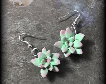 "Earrings ""succulent garden"""