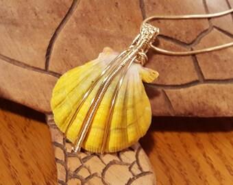 Sunrise Shell Pendant Necklace - 14K gold filled