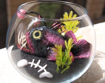 Sea-devil Angler fish in glass