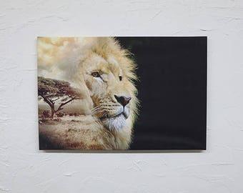 Composite Lion Art Canvas 60cm x 40cm