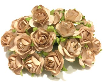 Beige Open Mulberry Paper Roses Or080