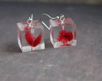 Pierced ears Cubes resin inclusion of dried herbs red tail Bunny