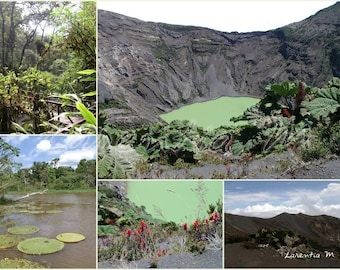Photo memory volcanoes of Costa Rica 30X40cm and pond in the Brazil