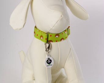 Hearts and Hedgehogs Green Base Greyhound/Sighthound/Dog: House/Tag Collar