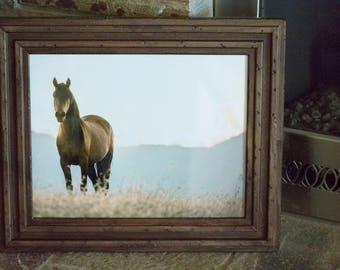 Framed 11x14 Gabby