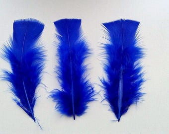 set of 8 feathers Blue 10-15cm