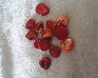 Set of 10 orange shell beads