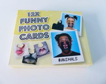 12 photobooth cards face down photo hangover lama lion animal dog cat