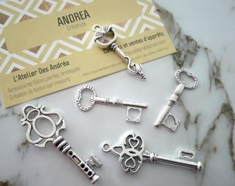 ☆ Set no. 4 / 5 silver metal key x / shapes mixtes☆