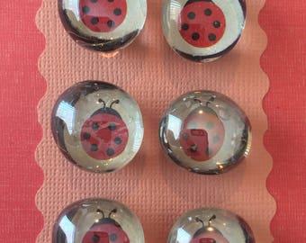 """Magnets 3/4"""" Ladybugs"""