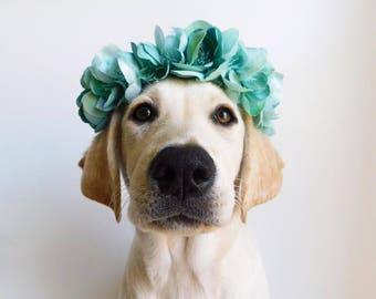 Teal Pet Flower Crown