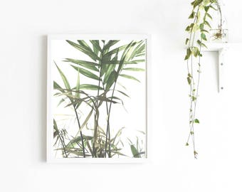 Scandinavian Tropical Leaf PRINTABLE Wall Art Poster Nordic Photography for Gallery Walls–Instant Digital Download File