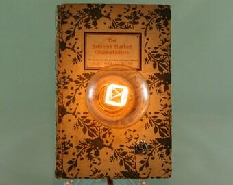 "Book lamp ""Hiking booklet"""