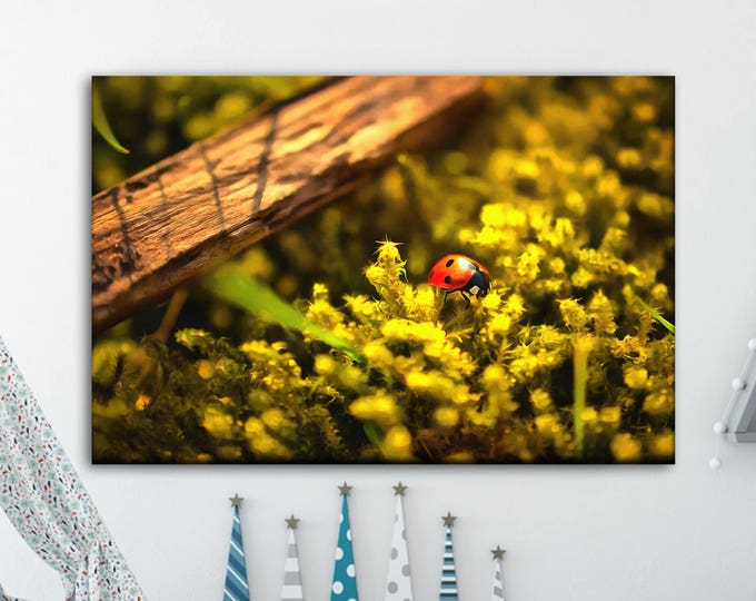 Ladybug canvas print, Сute canvas, Art Ladybug, Canvas, Interior decor, Room decor, Gift for her, Large Art painting, Gift