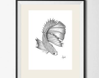Fish drawing using graphite pencil - illustration print on canson paper 280 gr