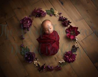 Newborn Baby Girl Flower Digital Backdrop / Background