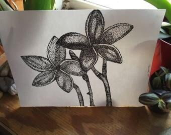 Plumeria Pointillism Print