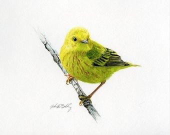 Yellow Warbler Watercolor Notecard
