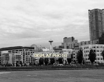 Seattle Space Needle Skyline