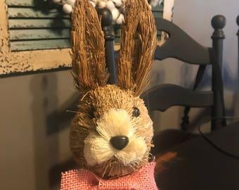 Easter Rabbit