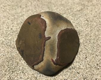 Alien Sea Stone * Beach Find * Natural and Minimalist * Home Decor * Beach Rock * Paper Weight * Alien Gift * Rare Sea Washed Rock * Italian