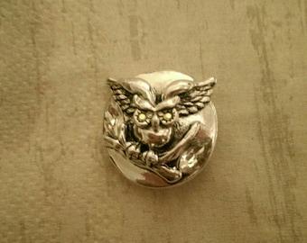 Snap jewelry owl