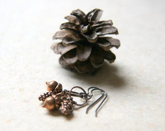 Pine Cone and Acorn Earrings - Antiqued Copper Earrings - FREE GIFT WRAP
