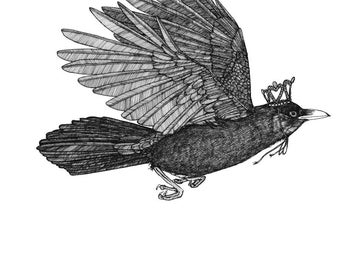 Crow Flies Away Wearing a Glittering Crown ORIGINAL artwork ink drawing bird art illustration on paper 9 x 12