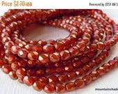 20% Clearance SALE Czech 4mm Beads  - Halo Cardinal Czech Glass Beads Faceted Firepolished Round - 50 pcs