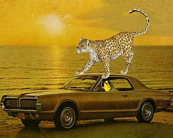 That Candace, she was a real west coast wildcat in her new Mercury Cougar. Limited edition collage print by Vivienne Strauss.