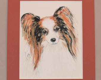 Papillon Dog Art Giclee Fine Art Print Matted By Cori Solomon