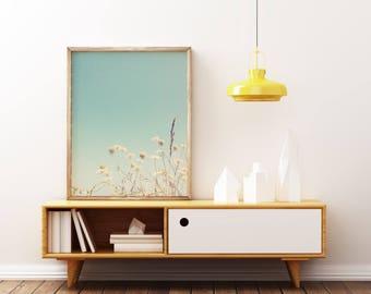 Flower Print, Minimal Summer Decor, Floral Photo, Minimalist Art, Pastel Blue and Cream - My Summer of Love