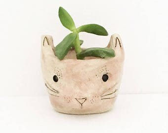 Pink Ceramic Cat Planter