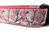 Dog Leash, Cherry Blossom, 1 inch wide, 1 foot, 4 foot, or 6 foot