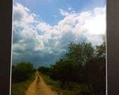 south texas path- photo p...