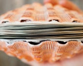 Reserved for Grace: Scallop Shell Coptic Journal | Orange