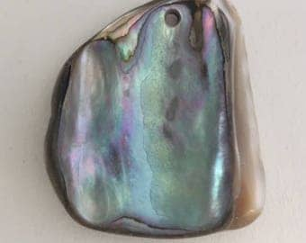 1 Abalone Piece -  with one drilled hole