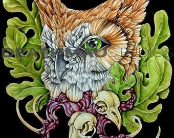 Wisdom - Fine Art, Giclee Print