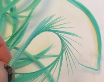 20 Pieces Premium Mint green Biot Goose Feathers Great for Crafts