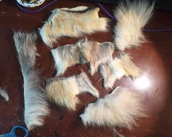 Small Wolf hide scrap lot all in photo