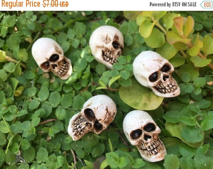 Featured listing image: SALE Miniature Skulls, Packaged Set of 5 Pieces, Fairy Garden Accessory, Miniature Gardening, Home and Garden Decor, Halloween Deco, Topper