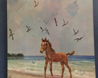 Book Seastar Orphan of Chincoteague Marguerite Henry 1971 Printing Soft Cover