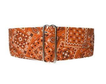 2 Inch Martingale Collar, Orange Martingale Collar, Bandana Martingale Dog Collar, Orange Bandana, Orange Dog Collar, Preppy