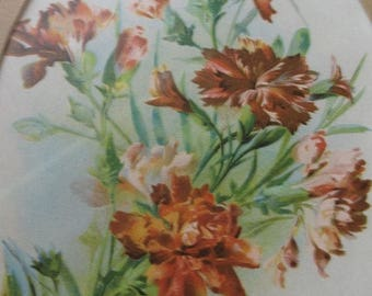 15 % off Vintage Framed ANTIQUE Chromo  Lithograph Dated 1896 of Wild Flowers