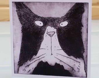 Tom Cat - blank inside card, tom cat card, tom cat greeting card, tom cat birthday card, funny cat card, humourous cat card, fun cat card